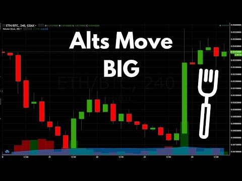 Post Bitcoin Gold Fork Movements – Analyzing the Craziness