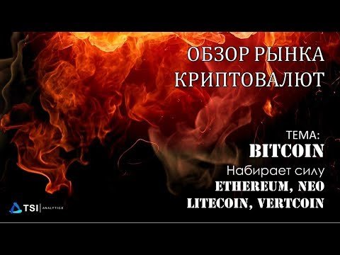 Bitcoin набирает силу. Litecoin, Ethereum, NEO, VertCoin   Обзор TSI Analytics