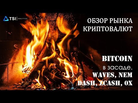 Bitcoin — в засаде. Waves, NEM, DASH, ZCash, 0x | Обзор TSI Analytics