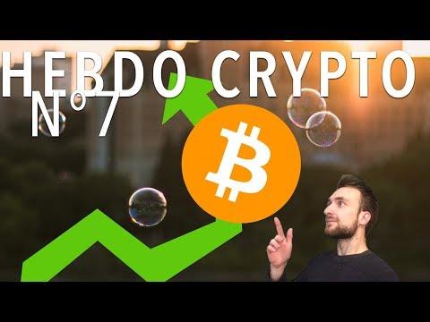 Hebdo Crypto – Bitcoin = Bulle ? Crypto-chatons, Lightning 1.0 et RSK