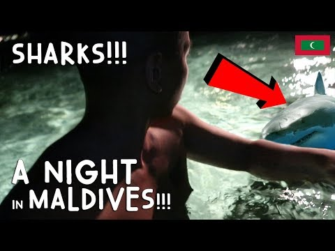 OMG! SHARKS! A NIGHT OUT IN MALDIVES | Vlog #4