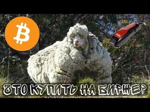 КОГО ПОБРЕЮТ на крипторынке? Купить альты или держать BitCoin (btc)? Криптовалюты Stratis, Qtum, NEM
