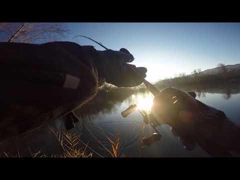 La Scena Più DIVERTENTE che mi sia MAI Successa a Pesca – NON FATE COME ME!