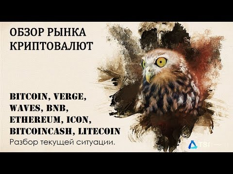 Bitcoin, Verge, Waves, BNB, Ethereum, ICON, BitcoinCash, Litecoin. Разбор текущей ситуации.