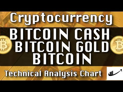 Jan-17 BITCOIN CASH : BITCOIN GOLD : BITCOIN Update CryptoCurrency Technical Analysis Chart