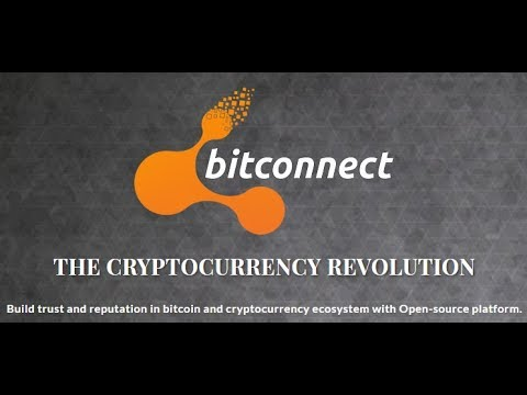 BITCONNECT COLLAPSES/Everything Lost/PANIC.