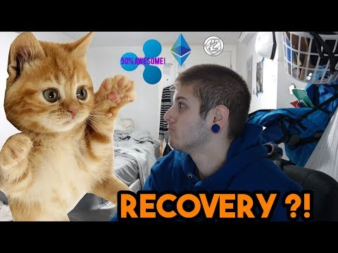 Ripple XRP Up 50% & Cryptos Bounce Back – Recovery or Dead Cat Bounce ?