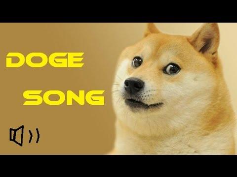 DOGE MEME SONG !●