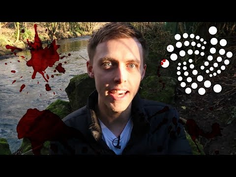 Thoughts on Crypto Market Crash | Have I Sold My IOTA? | Vlog #107
