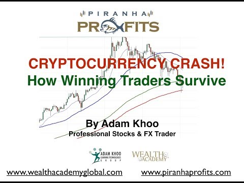 Cryptocurrency Crashes! How Winning Traders Survive