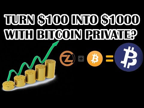 Turn $100 into $1,000 with BITCOIN PRIVATE (BTCP) cryptocurrency coin? Bitcoin analysis post crash.