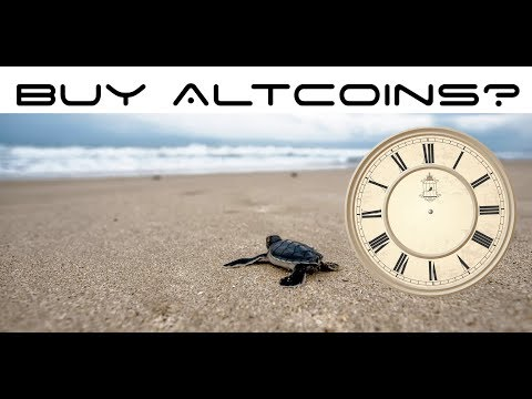 Is Now a Good Time To Buy Altcoins? Cryptocurrency Market Dip