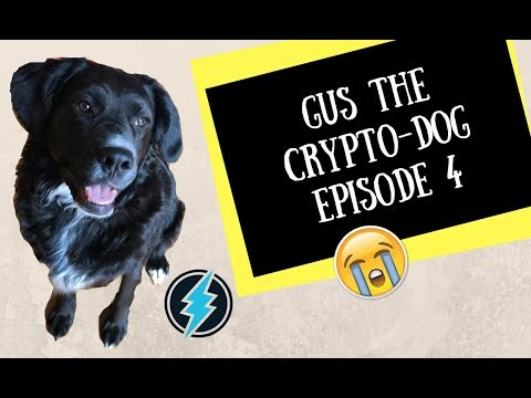 Gus the CRYPTO-DOG (Episode 4) ETN, Kyber, and ICON?