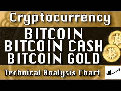 BITCOIN : BITCOIN CASH : BITCOIN GOLD Update CryptoCurrency Technical Analysis Chart