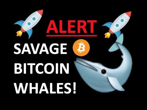 CRYPTOCURRENCY DUMP! SAVAGE BITCOIN WHALES CRUSHING CRYPTO TRADING – TRADE NEWS 2018
