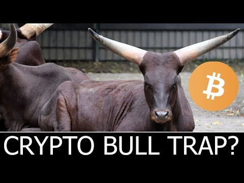 Cryptocurrency Bull Trap or Market Ready To Move Up?