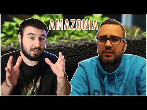 SUSTRATO ADA AMAZONIA, TODO LO QUE DEBES SABER, CON MY BUCE TANK!