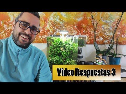 Vídeo Respuesta 3:Iluminación acuarios, abonado ADA Seachem y más!!