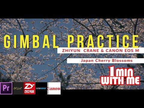 Gimbal Practice Japan Cherry Blossoms … Canon EOS M & Zhiyun-Crane V2…. 1 Min With Me Video Blog