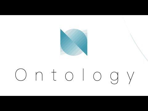 네오(NEO) 다홍페이의 기대작, 온톨로지(Ontology)를 소개합니다.