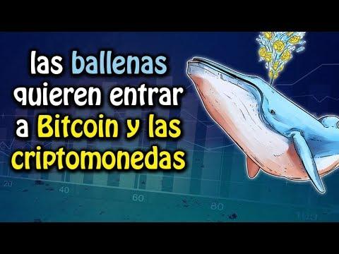 las ballenas quieren entrar a bitcoin   análisis verge, tron, Eth, btc y bch