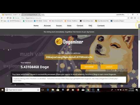 luck doge es scam 2018
