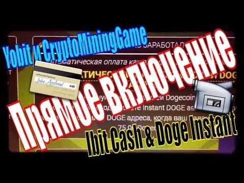 Срочность Ответы на вопросы по Ibit Cash Yobit Doge Instant Moon Bch Эксперимент записи