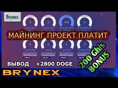 Brynex Бонус 200 GH/s – Проект платит !!! Вывод +2800 DOGE