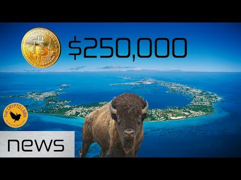 Bitcoin & Cryptocurrency News – Bitcoin $250,000, Bermuda Wants Crypto Biz, & Skin Wallets