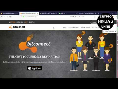 MY BIGGEST MISTAKE IN CRYPTO! BITCONNECT, DAVOR & MINT COIN! WHAT NOT TO DO IN BITCOIN
