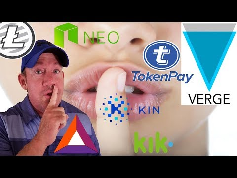 XVG Verge & Litecoin & TokenPay CEO – Kin Token Partnership! – Walmart Blockchain!