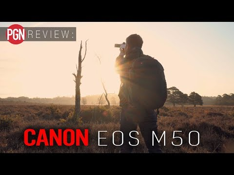 Canon EOS M50 Review – Just how severe is the 4K crop?
