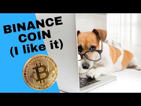 BINANCE COIN (I like it)