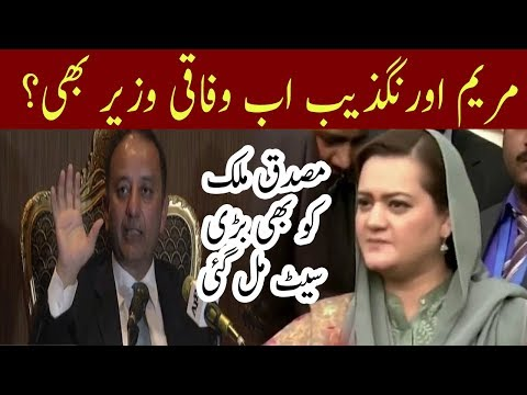 Maryam Aurangzeb Promotion By PMLN   Neo News