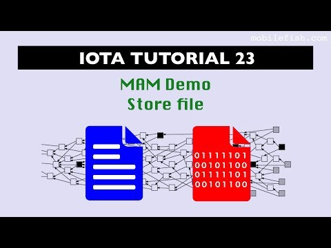 IOTA tutorial 23: Masked Authenticated Messaging Demo Store File