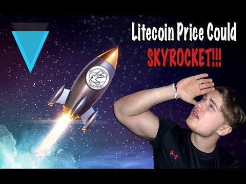 Litecoin price 'could SKYROCKET': Cryptocurrency SOARS by 4000% and might NOT be finished