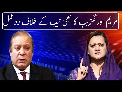 Maryam Aurangzeb Reaction Against NAB | Neo News