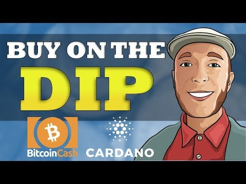 Are You Buying On The Dip? Bitcoin Cash & Cardano Could Be Great Choices!