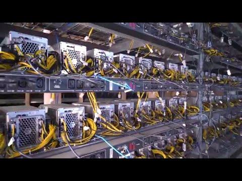 Setting Up A HUGE Bitcoin Cash Mining Farm