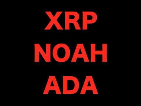【超重要】NOAH,XRP,ADAって結局、、