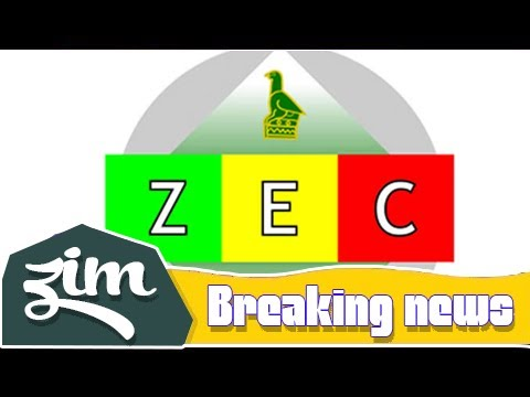'Zec violates electoral law' | Zim News