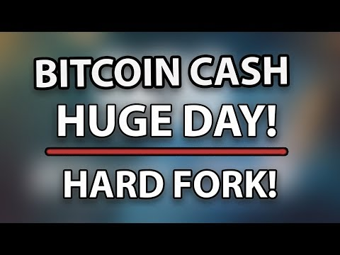Bitcoin Cash (BCH) Huge Day Today! The Hard Fork, What Will Happen To The Price?