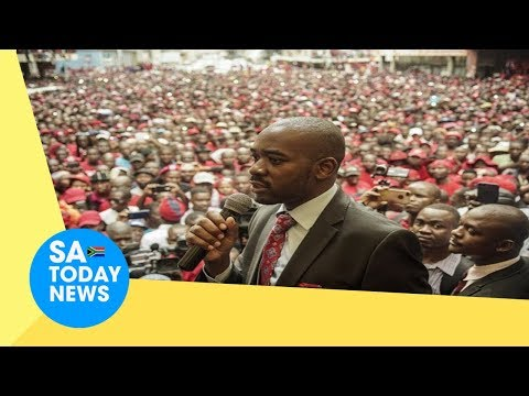 ZEC warned as Chamisa's MDC vows to stop any election which is not free and fair