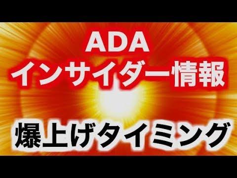 【仮想通貨】重要!!ADA関係者情報が爆上げの肝だ!!