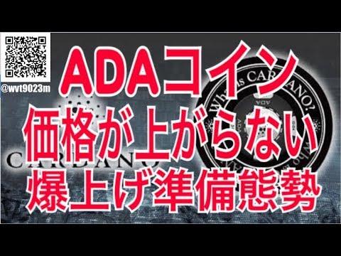 仮想通貨 ADAコイン爆上げへのカウントダウン!!日本の3大メガバンクついに始動!!!