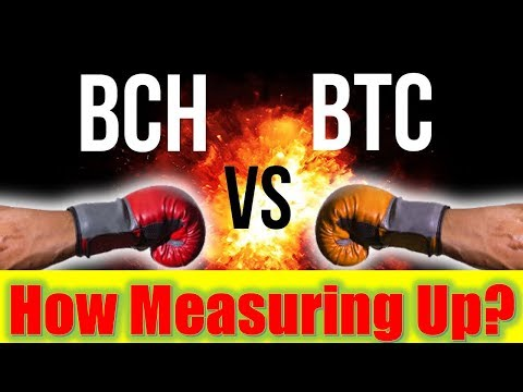 Bitcoin Cash vs Bitcoin – How Is BCH Measuring Up?