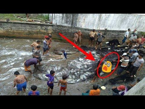 isi Jaring Nelayan ini Bikin HEBOH Warga,, WOOW..TakDisangka Ternyata Dalamnya Ada…..