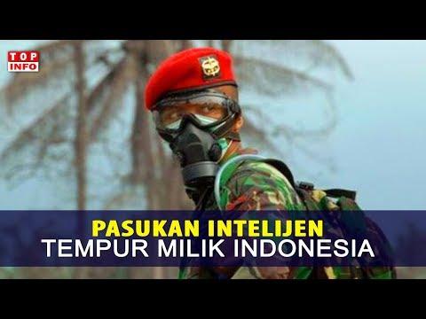 Inilah Pasukan Intelijen Tempur Super Rahasia di Dunia, Ada Dari Indonesia Salah Satunya !!