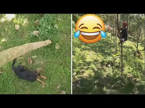 Fuh Harey Betol Nasib Baik Ada Pokok..Hahah Selamat!!!