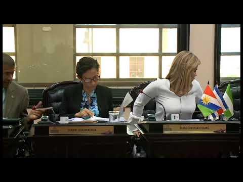 Ottón Solís recomendó acoger propuestas de PRN y PLN sobre contensión de gasto